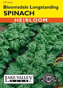 277-Spinach-Bloomsdale-Longstanding-web-big-217×300