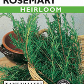 ROSEMARY FRENCH HEIRLOOM SEEDS