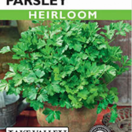 PARSLEY ITALIAN FLAT LEAF HEIRLOOM SEEDS