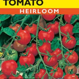 TOMATO BUSH RED CHERRY HEIRLOOM SEEDS