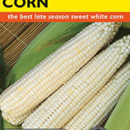 CORN SWEET SILVER QUEEN HYBRID SEEDS