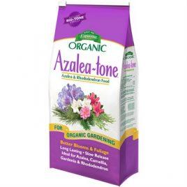 AZALEA TONE 4#