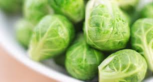 Brussels Plant Sprouts HG 3.5″