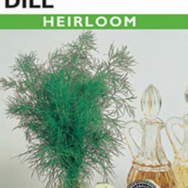 DILL FERNLEAF HEIRLOOM SEEDS