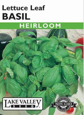 lettuce basil