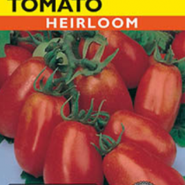 TOMATO BUSH ROMA HEIRLOOM SEEDS