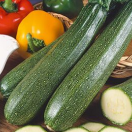 Squash Zucchini Plant Pac